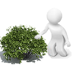Curso de Aplicador de Productos Fitosanitarios (plaguicidas)