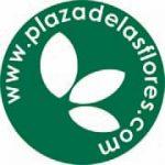 logo Centro de Estudios Plaza las Flores